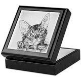 Abyssinian Pen and Ink Keepsake Box