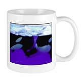 Shamu Mug