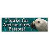 I Brake for African Grey Parrots Bumper Car Sticker