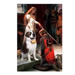Accolade / St Bernard Postcards (Package of 8)