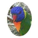 Lorikeet Christmas Ornament