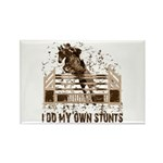 Hunter, Jumper Horse Stunts Rectangle Magnet (10 p