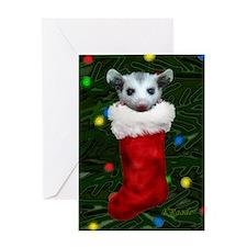 Possum in Stocking Greeting Card