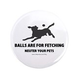 "Neuter Your Pets 3.5"" Button (100 pack)"