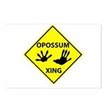 Opossum Crossing Postcards (Package of 8)
