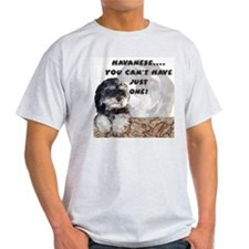 Havanese Ash Grey T-Shirt