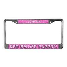 Pnk Plk Dt Red-Bellied Parrot License Plate Frame