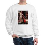 Accolade / Weimaraner Sweatshirt