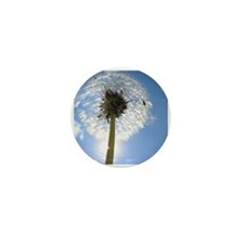 Dandelion Mini Button (100 pack)