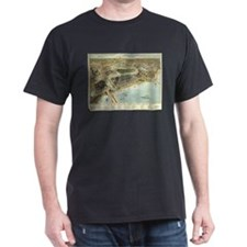 Chicago, 1893. T-Shirt