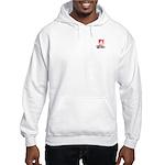 Anti-Hillary: Stop Billary Hooded Sweatshirt
