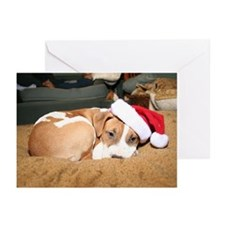 Christmas Stuff Greeting Cards (Pk of 20)