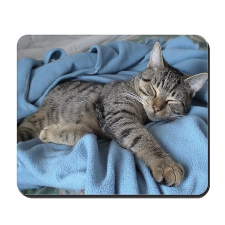 Cute Kitty 15 Mousepad