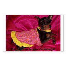SMALL DOG Sticker Miniature Pinscher