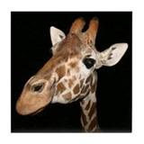 Beautiful Giraffe Tile Coaster