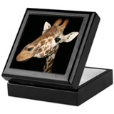 Beautiful Giraffe Keepsake Box