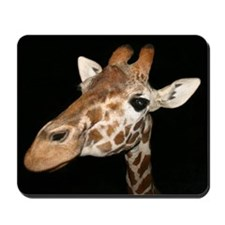 Beautiful Giraffe Mousepad