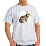 Cottontail Rabbit (Front) Ash Grey T-Shirt