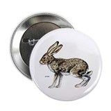 "Jack Rabbit 2.25"" Button (10 pack)"