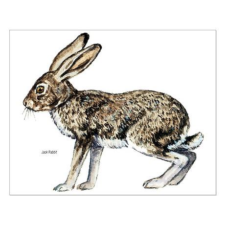 Jack Rabbit Small Poster