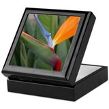 Bird of Paradise Tilt Keepsake Box