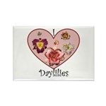 I Love Daylilies Rectangle Magnet (10 pack)