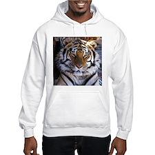Tiger/Jaguar Hoodie