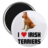 I Love Irish Terriers Magnet