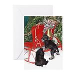 Schnauzer Christmas Greeting Cards (Pk of 20)
