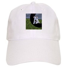 Tire Jump Terrier Baseball Cap