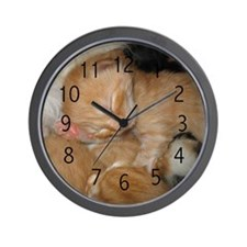 Newborn Kitten Sleeping Wall Clock