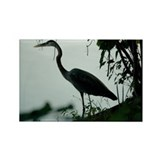 Heron Rectangle Magnet (10 pack)