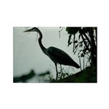 Heron Rectangle Magnet (100 pack)