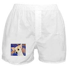 Chihuahua 5 Boxer Shorts