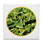 Hosta Smiley Face Tile Coaster