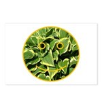 Hosta Smiley Face Postcards (Package of 8)