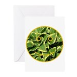 Hosta Smiley Face Greeting Cards (Pk of 10)