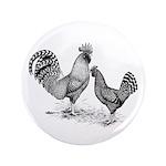 California Grey Chickens 3.5