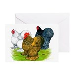 Assorted Cochins Greeting Card