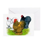 Assorted Cochins Greeting Cards (Pk of 10)