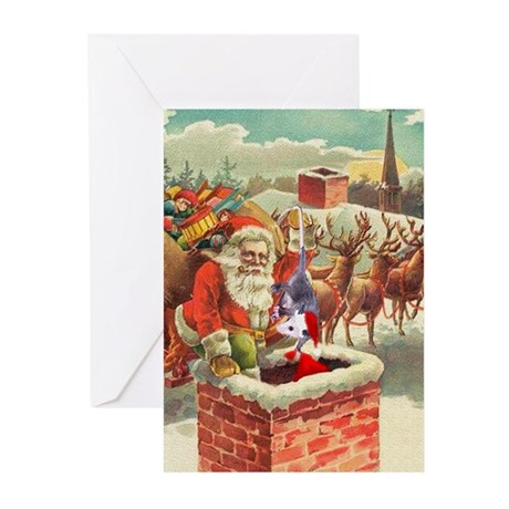 Santa's Helper Possum Greeting Cards (Pk of 10)