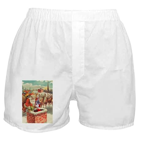 Santa's Helper Possum Boxer Shorts