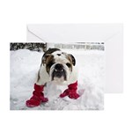 "Grover ""Winter"" Greeting Cards (Pk of 20)"