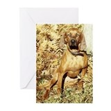 Redbone Greeting Cards (Pk of 10)