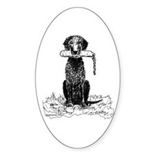 Curly-Coated Retriever with Bumper Oval Decal