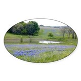 Bluebonnets and Pond Oval Decal