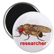 Funny Research Magnet