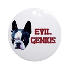 Boston Terrier Evil Genius Ornament