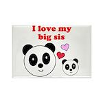 I LOVE MY BIG SIS Rectangle Magnet (100 pack)