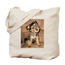 SILKY terrier Dog - Tote Bag